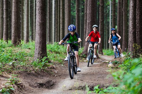 Wycieczka rowerowa po Kampinosie